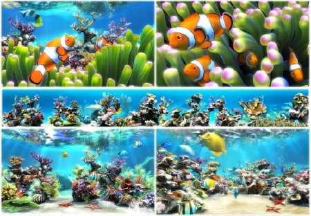 Sim Aquarium 3.8 Build 60 Premium RePack by Trovel (2014)